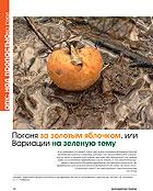 2007: Рейтинг наиболее стратегичных агрохимических предприятий