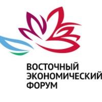 Восточный экономический форум — 2016