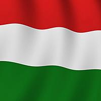 Рабочий визит в Венгрию