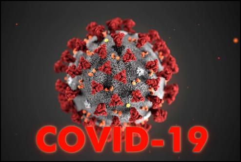 Участие в научно-практическом онлайн-семинаре «COVID-19.рф: информация против пандемии»